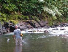 Wylie Carr of Montana USA fly fishing the upper Villa River near the Kolombangara crater