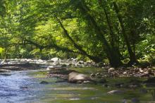 1. Vila River near Imbu Rano Lodge